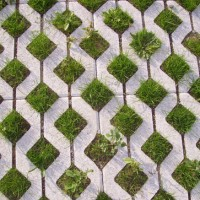 Rethinking Stormwater in the Concrete Jungle